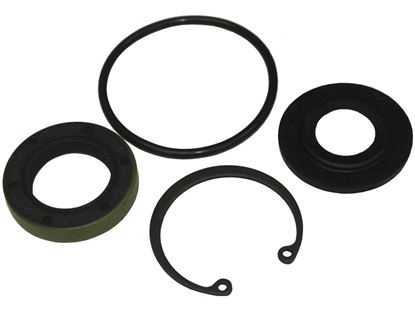Picture of Sweet Adjuster Nut Seal Kit