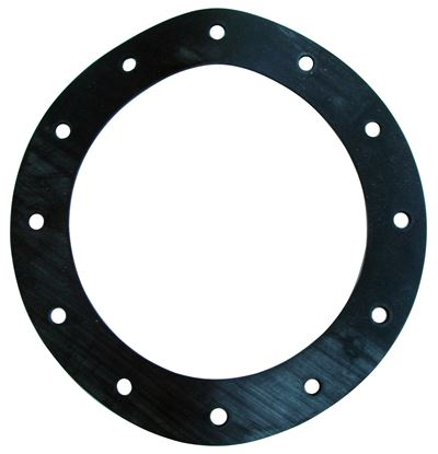 Picture of Jaz 12-Hole Flange Gasket