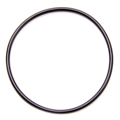 Picture of Bulldog CT-1 O-Ring For Seal Plate Flange