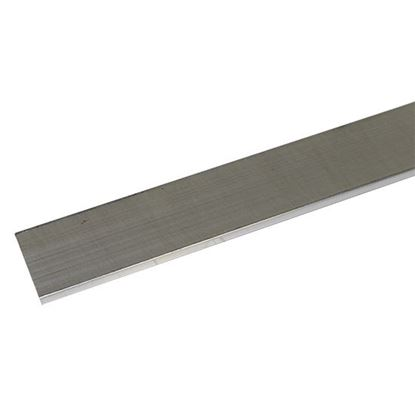 Picture of Body Mounting Flat Strap