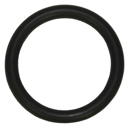 Picture of Brinn Lower Shaft Pin O-Ring