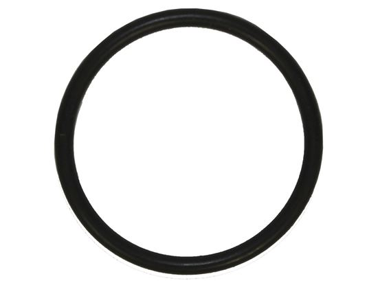 """Picture of Bert SG O-Ring - (1/16"""" W - 13/16"""" ID - 1.00"""" OD)"""